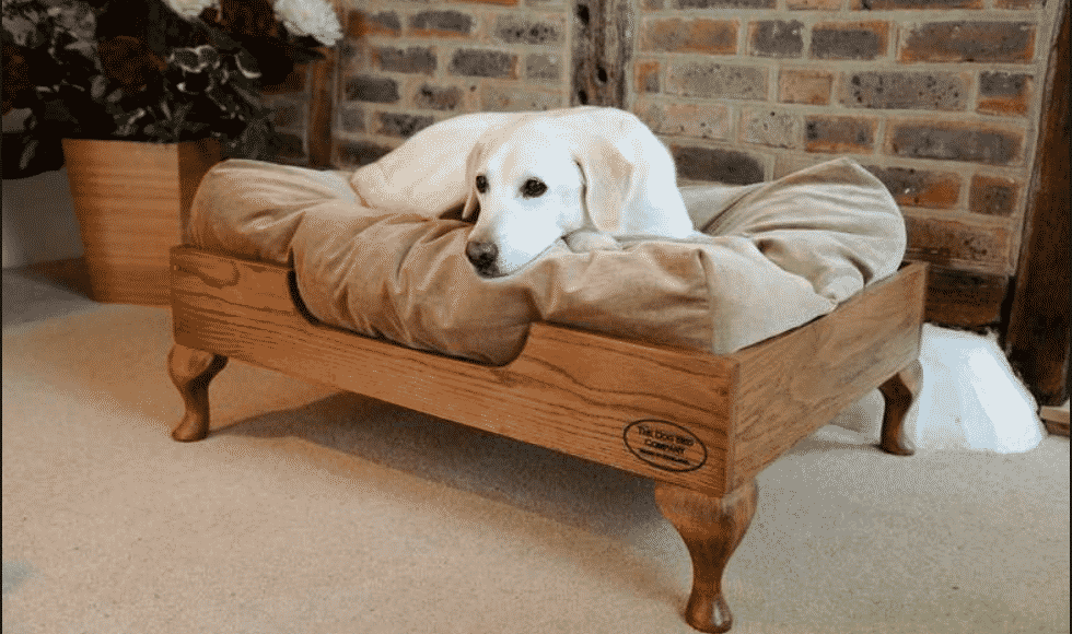 How to Clean a Dog Bed