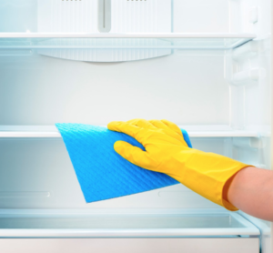 Some Useful Tips on Organizing and Cleaning a Refrigerator and Freezer