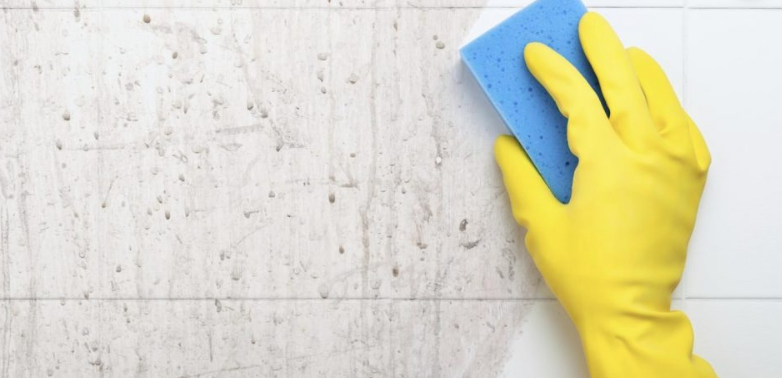 Domestic Hygiene: Tub and Tile Cleaning